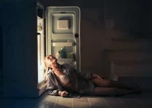 quietest compact refrigerator